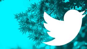 Stritan Twitter